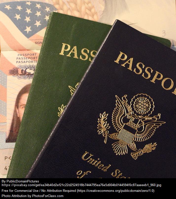 Immigration Vingettes | Reyha's Blog